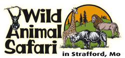 About Wild Animal Safari